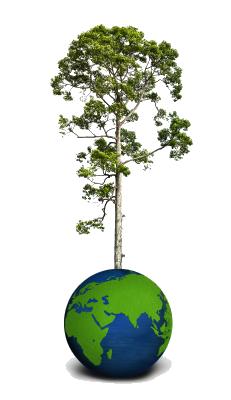 Making-the-world-greener